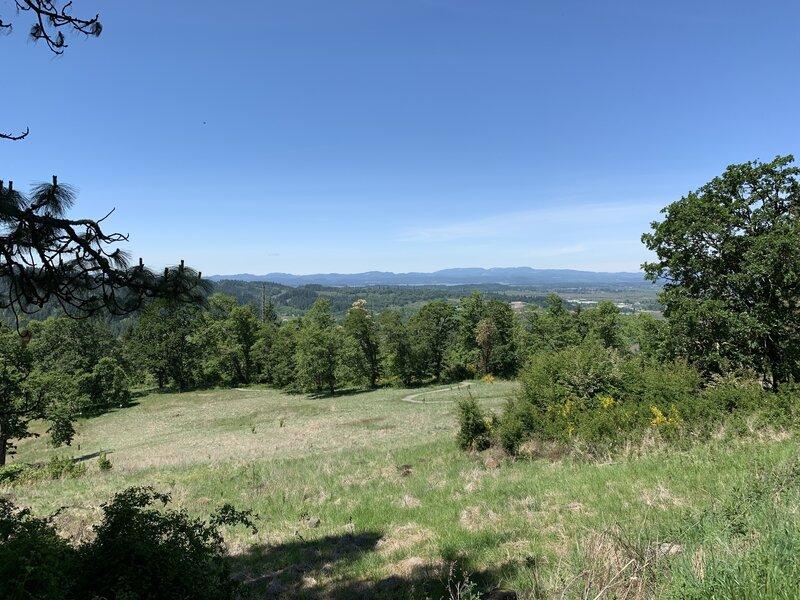 View towards Fern Ridge Resevoir.