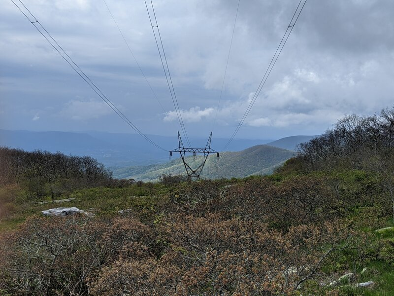 View from Homestead Trail at powerline corridor.