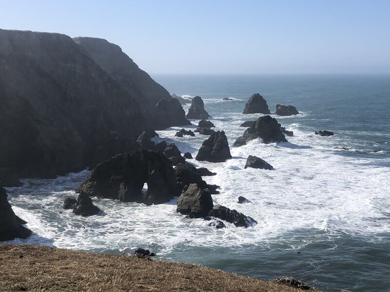 Waves hitting rocks visible from trail.