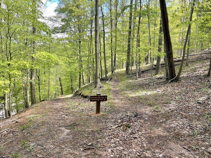 Barton's Lake Trail where it meets the Fisherman's Trail trailhead.