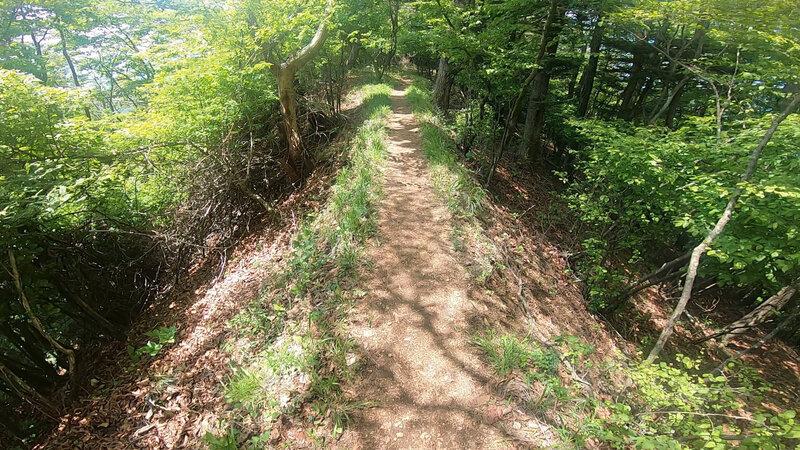 The trail following the ridge line.