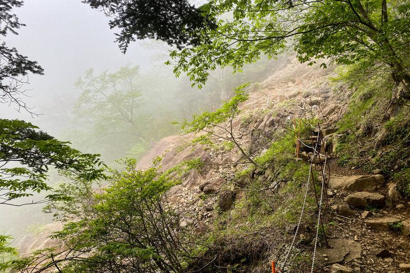 The fog shrouded trail.