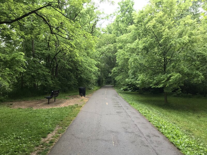 A bench facing West towards the Olentangy River on the Olentangy Trail
