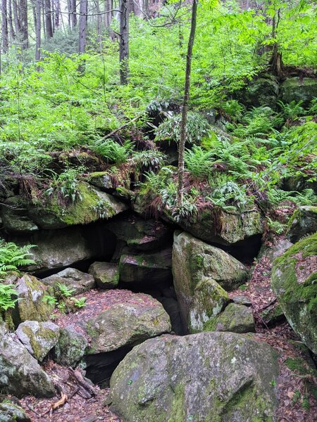 Rocks at Ice Glen Trail