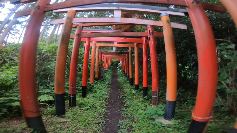 Tunnel of torii gates at Fushimi Hakuseki Inari Shrine.