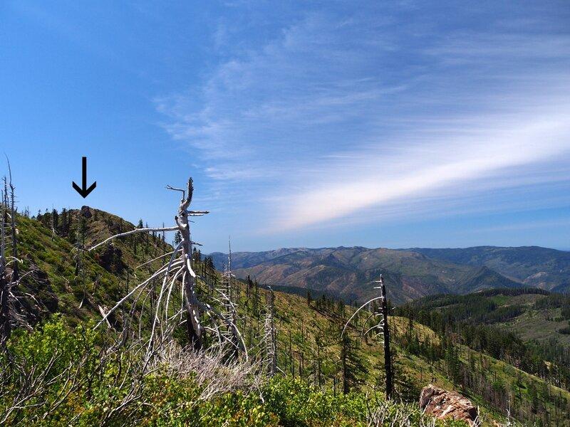 Fish Hook Peak (arrow) from the trail.