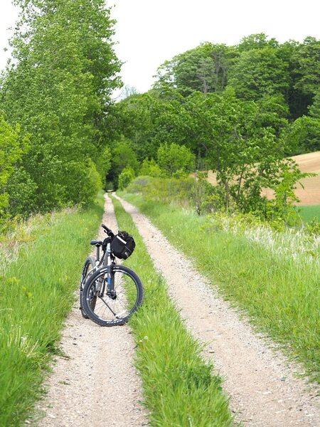 G2G Trail image