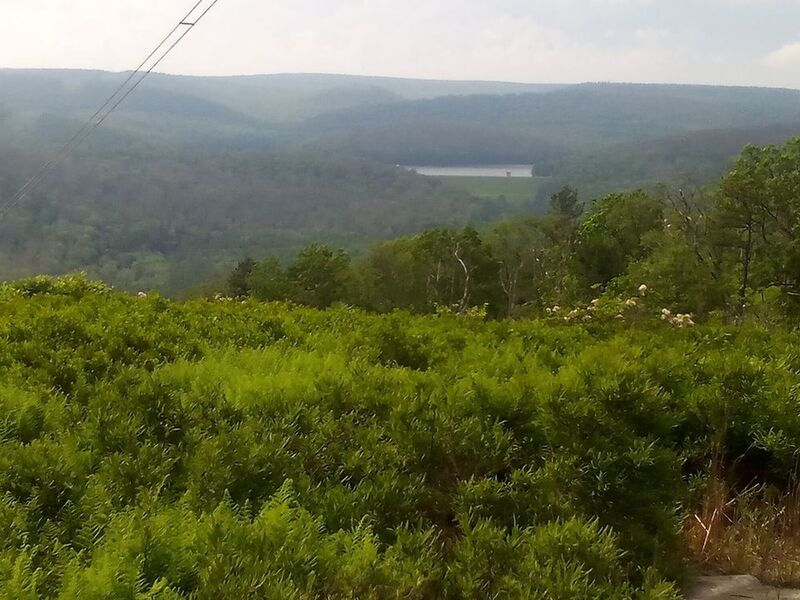 Power lines at the top. Great view!