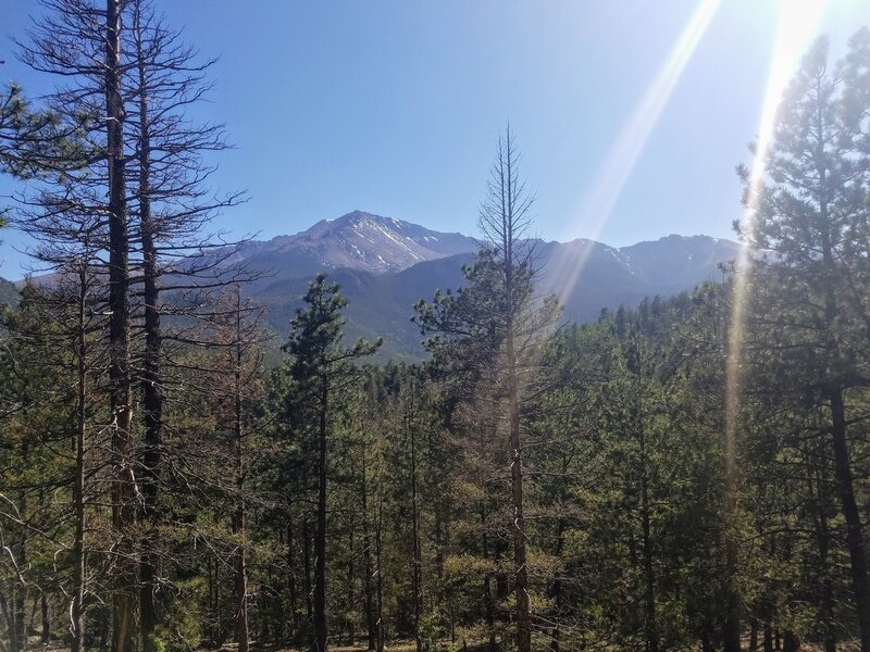 View of Pikes Peak from Heizer Trail.