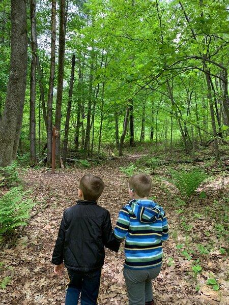 Hiking the Barred Owl Trail.