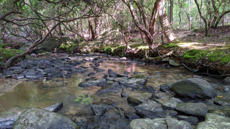 Crossing Walkers Creek