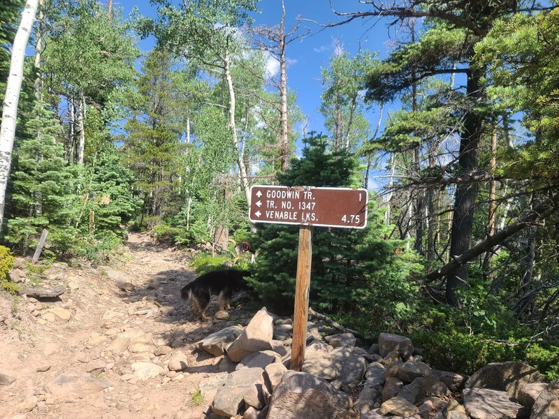 Sign at the Venable TrailHead for Goodwin Trail.