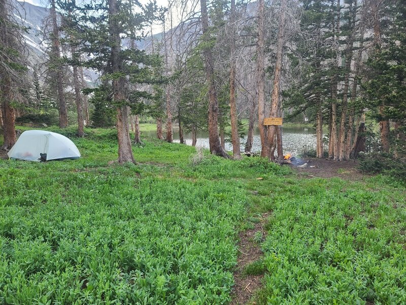Campsite at Goodwin Lakes
