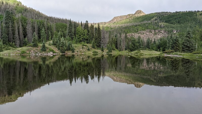 Upper lake - many dead trees (spruce beetle).