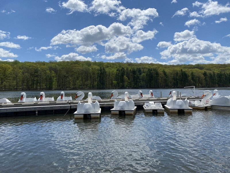 Tickets (2 persons/4 persons) for the paddle boats can be purchased at the Boats Hut. Orange Township residents (with ID) may receive a discount.