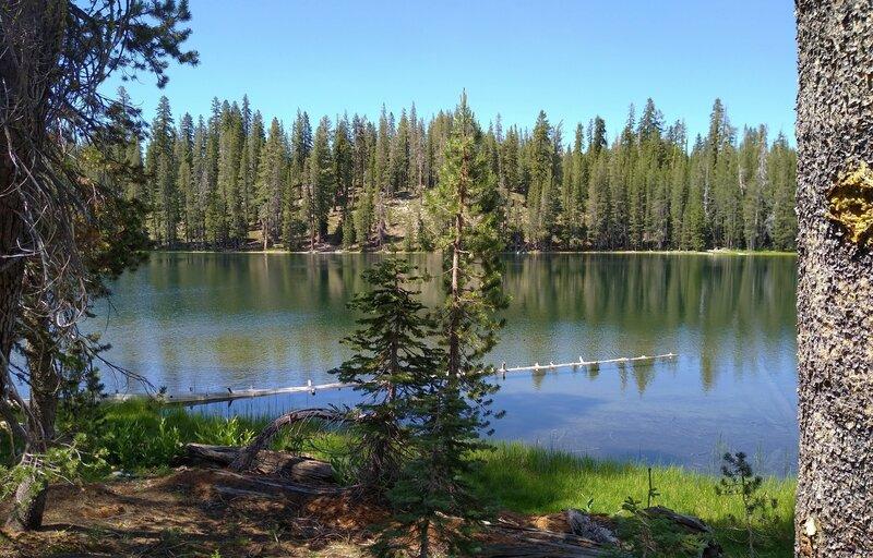 Jakey Lake, a pretty little lake along Widow Lake to Snag Lake Trail.