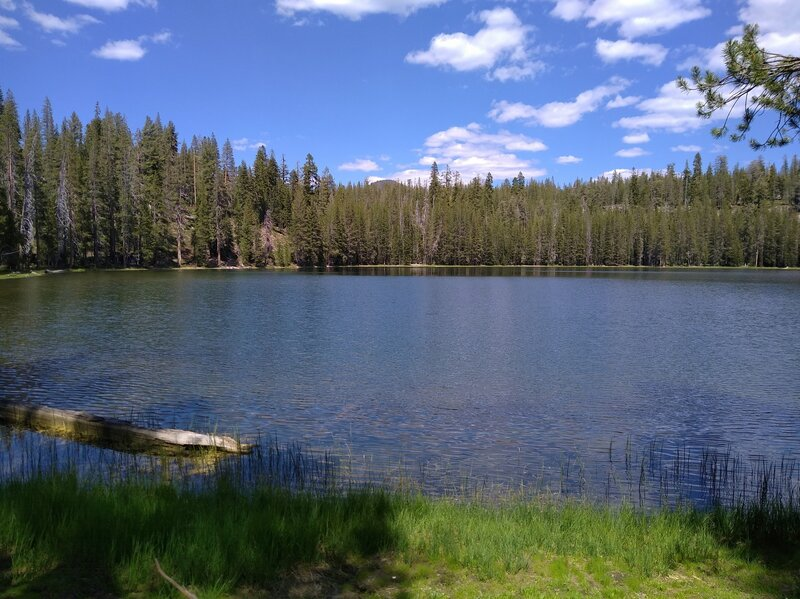 Red Cinder (center) at 8,375 ft., can be seen peeking out above the forest across Jakey Lake to the northeast.
