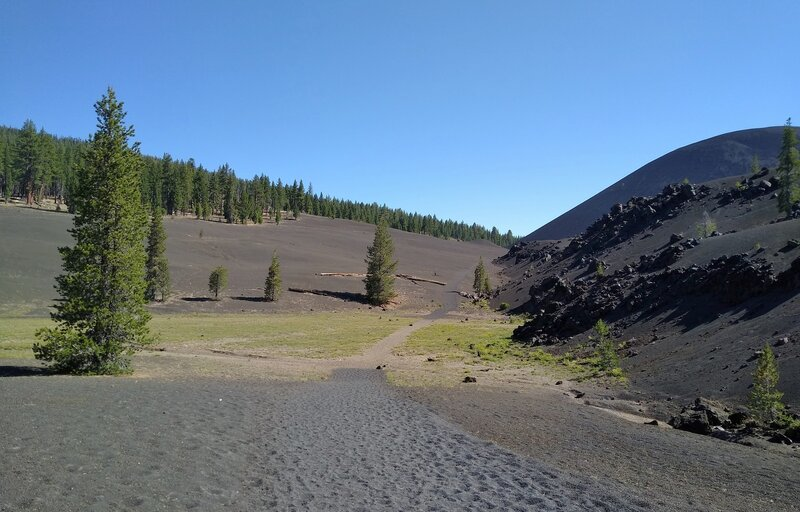 A bit of spring fed greenery stands out in the dry, barren volcanic ash to the west of Cinder Cone.  Cinder Cone is behind Fantastic Lava Beds on the right. Seen looking north from the trail.