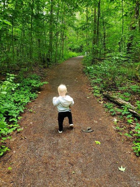 Little hiker on Trail 1
