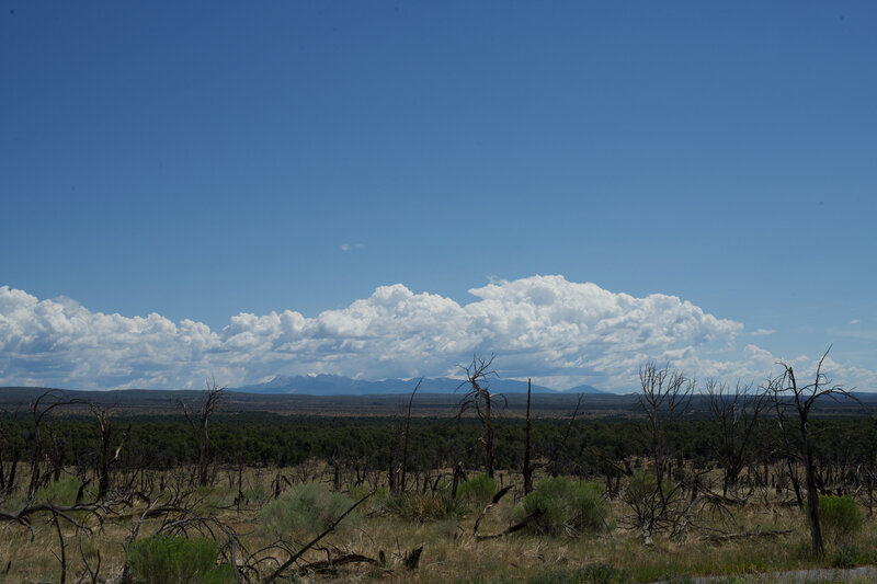 A view of the mountains from the Badger House Community Trail.