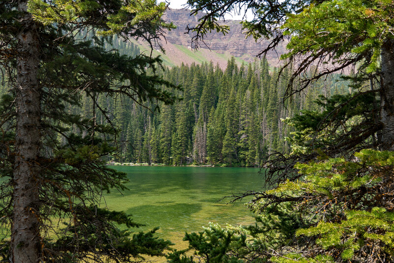 A Peek Into Williams Lake