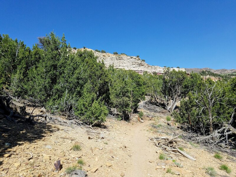 View to the East from Unconformity Trail