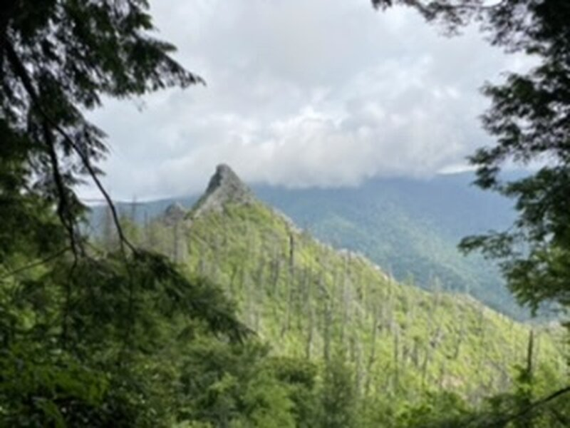View of chimney tops from the trail.