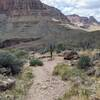 End of Hermit Trail