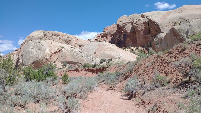 Red sandstone formations tilted at 45 degrees - worth the trip.
