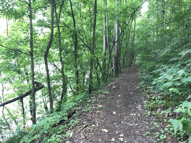 Great for hiking, running or biking.