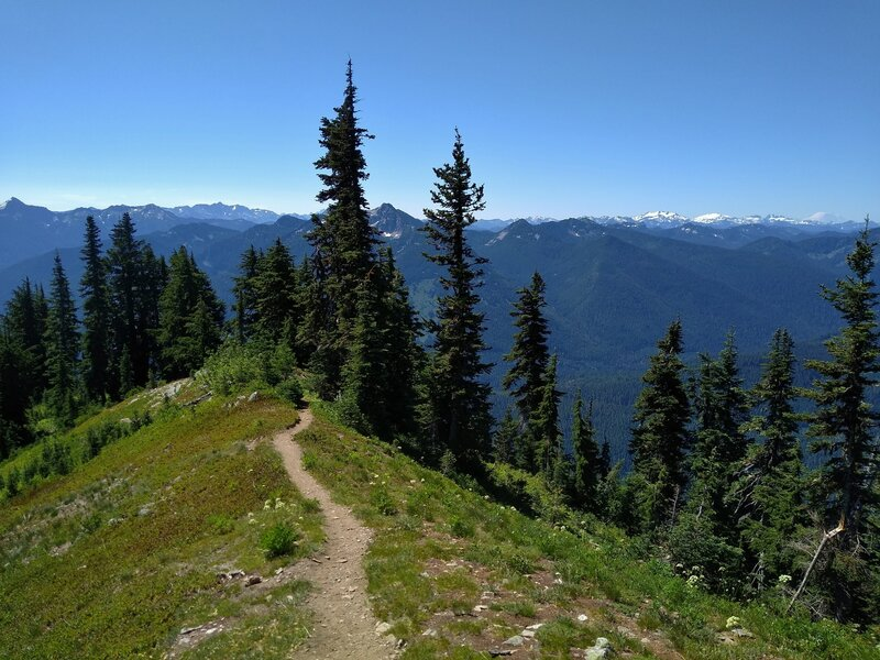 Panorama of mountains to the south, including Mt. Rainier, 14,411 ft., in the far distance (far right) from high on the ridge top of Wenatchee Ridge Trail.
