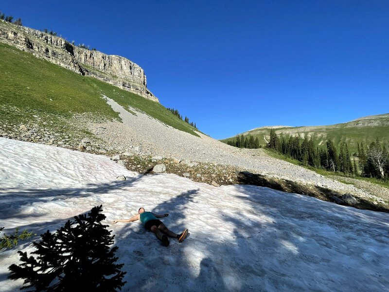 Even during a drought year, you can find snow on the north side of the ridge. This is right by the Waterfall Canyon - Sheep Cr. Trail split.