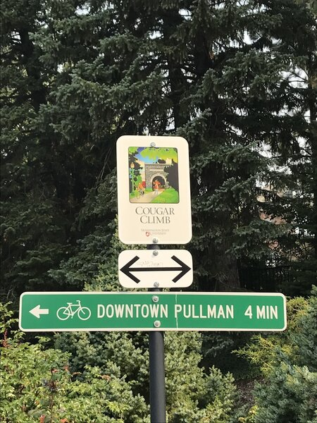 Cougar climb sign