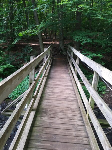 Shortly after starting on the trail you come to this bridge.