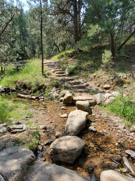 Typical boulder-sized stepping stones to cross the water.