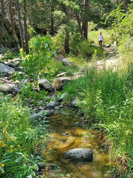 In August, the water dries up and gets sluggish the closer you get to the trailhead.