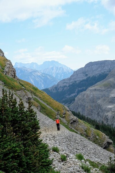 View on Mount Assiniboine.