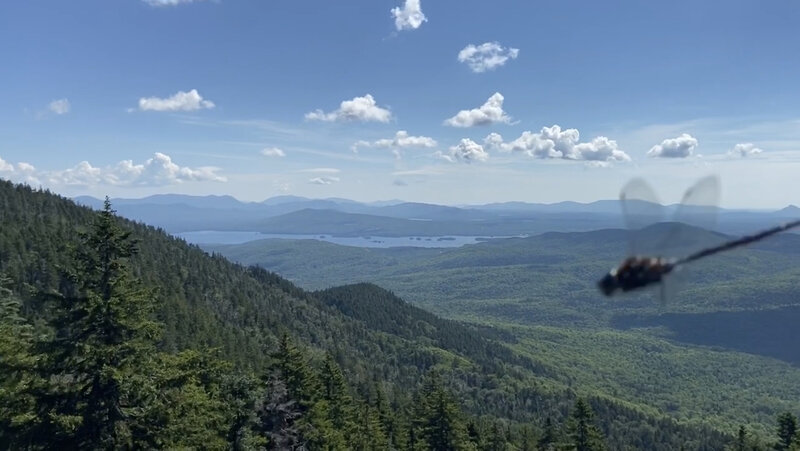 View from Big Moose Scenic Outlook ( with a dragonfly photobombing :D ).