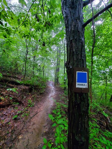 The Blue Loop is a combination of other trails. Simply follow the blue blazes and you'll be on the right path.