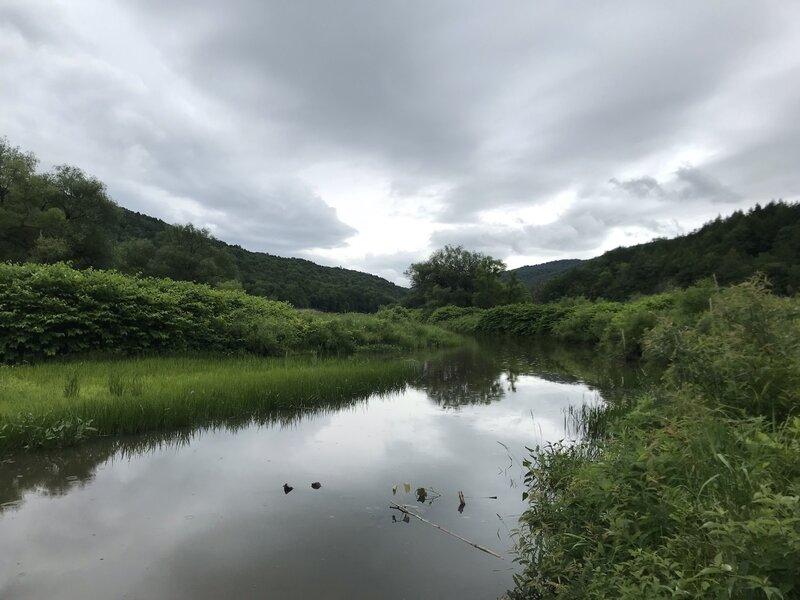 Little River under overcast sky.