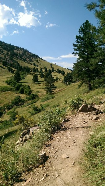 View up-valley from the Dakota Ridge Trail