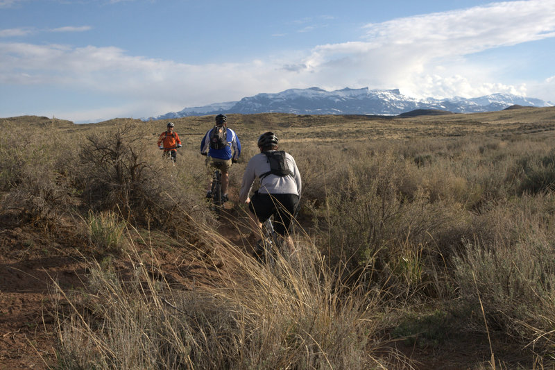 """Classic Wyoming sage brush slalom riding on """"Red Snake. Carter Mountain in the background."""