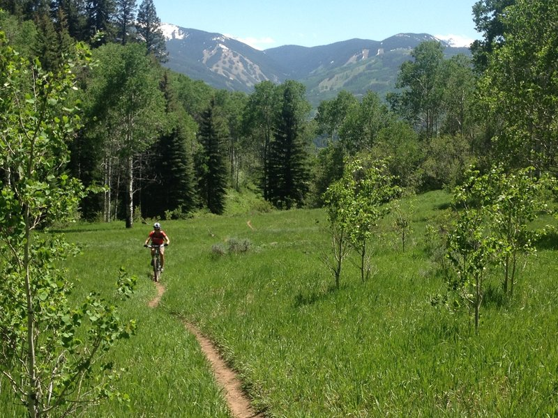 Great meadows and views of Beaver Creek