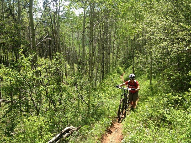 Hike-a-bike.  LOTS of hike-a-bike!