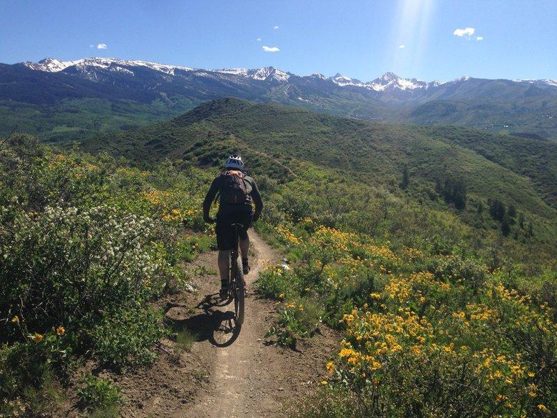 Rider on Skyline Ridge trail