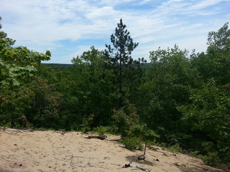 A view from a dune; North Country Trail, MI