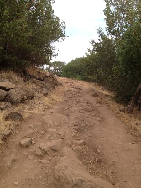 The Spring Creek Trail close to Lake Ilsanjo. Very steep and very rocky.