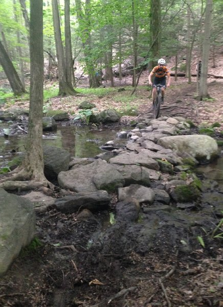 Negotiating a rock stacked stream crossing