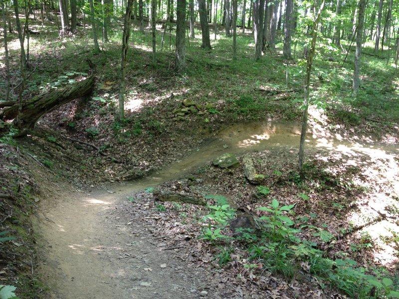 Flowy trail
