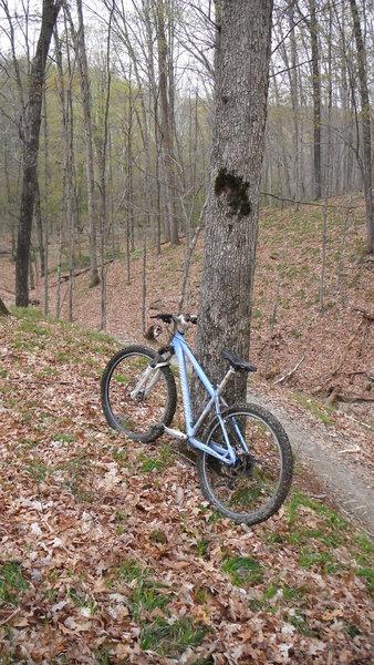 Bike along Green Valley